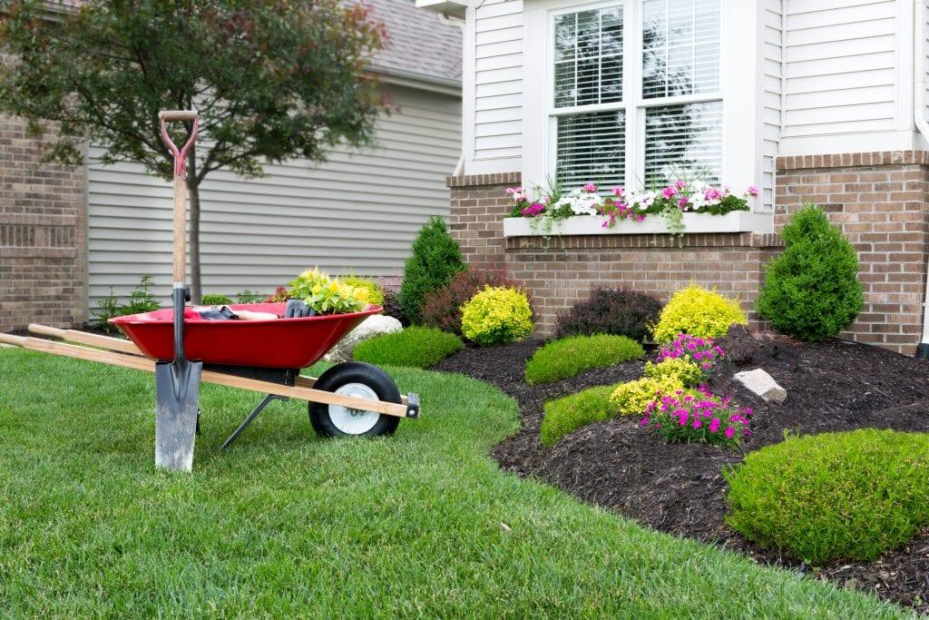Planting flower garden around a house