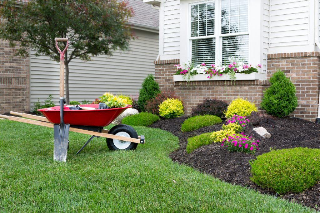 Planting flower garden around a house